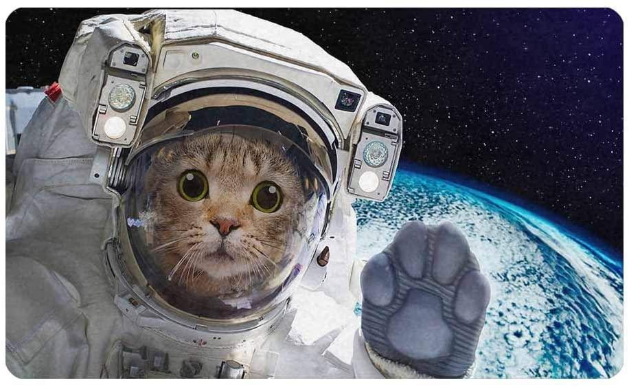 InterestPrint Funny Cat Astronaut in Space Front Door Welcome Mat 30