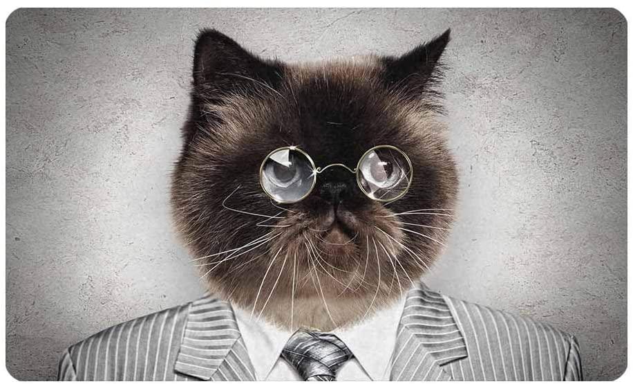 InterestPrint Funny Cat in a Business Suit Indoor Outdoor Front Welcome Door Mat - 30