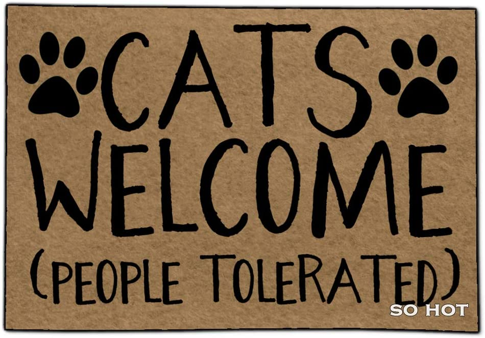 So Hot Funny Door mat Custom Indoor Cats Welcome People Tolerated 23.6x15.6 Inch Home and Office Decorative Entry Rug Garden/Kitchen/Bedroom Mat Non-Slip Rubber