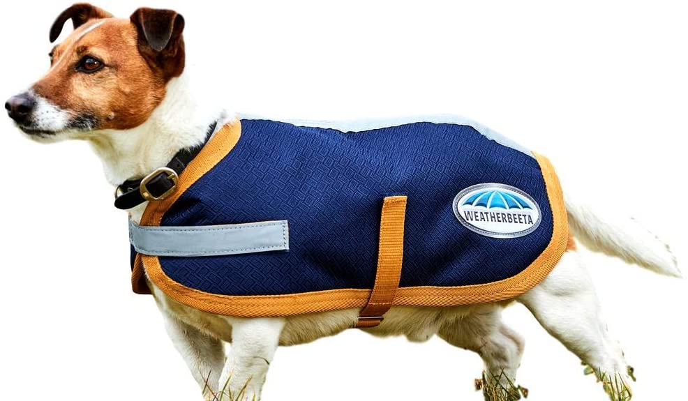 Weatherbeeta 1200D Dog Coat, Navy/Gold, 28