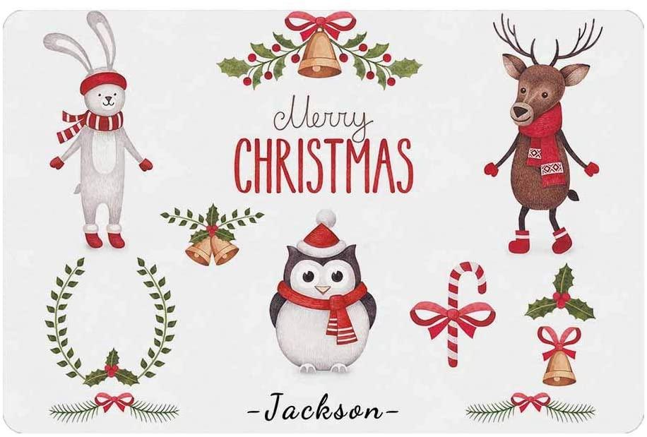 Welcome Doormat with You Text, Custom You Own Doormat Christmas Penguin Deer Rabbit Funny Carpet 24