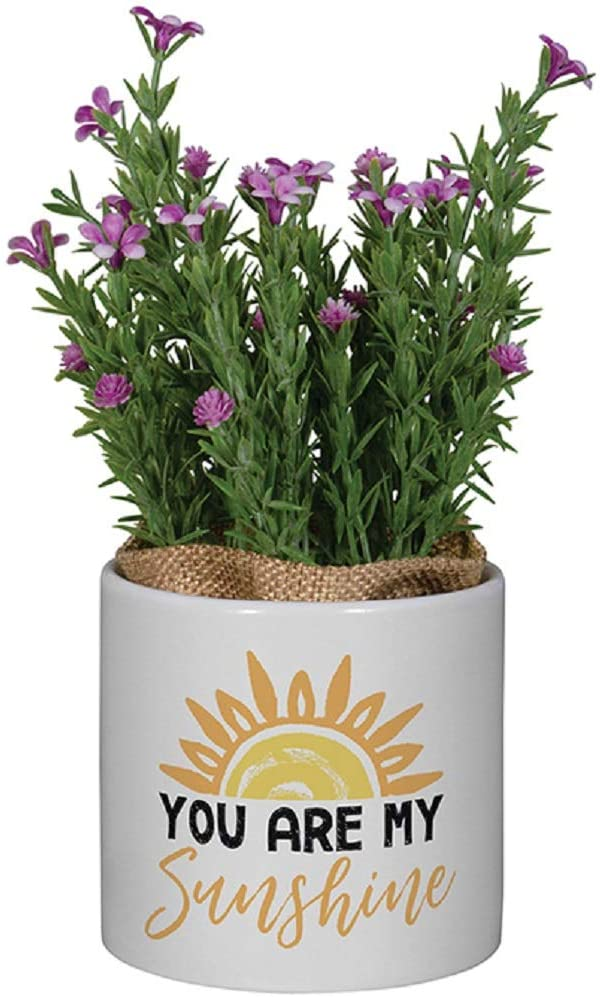 Carson Sunshine Planter with Artificial Flowers