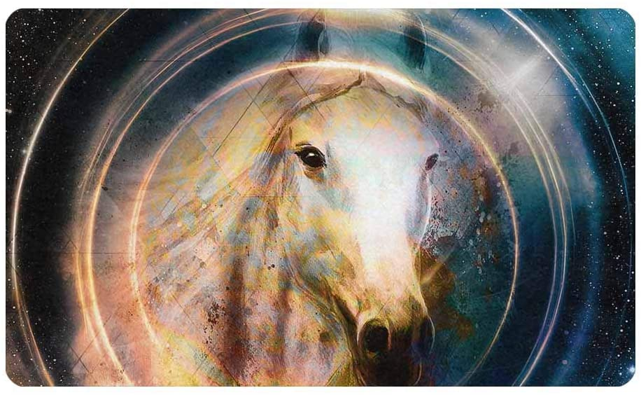 InterestPrint Horse Space Circle Light Door Mat Welcome Entrance Way Rug Outdoor/Indoor 30
