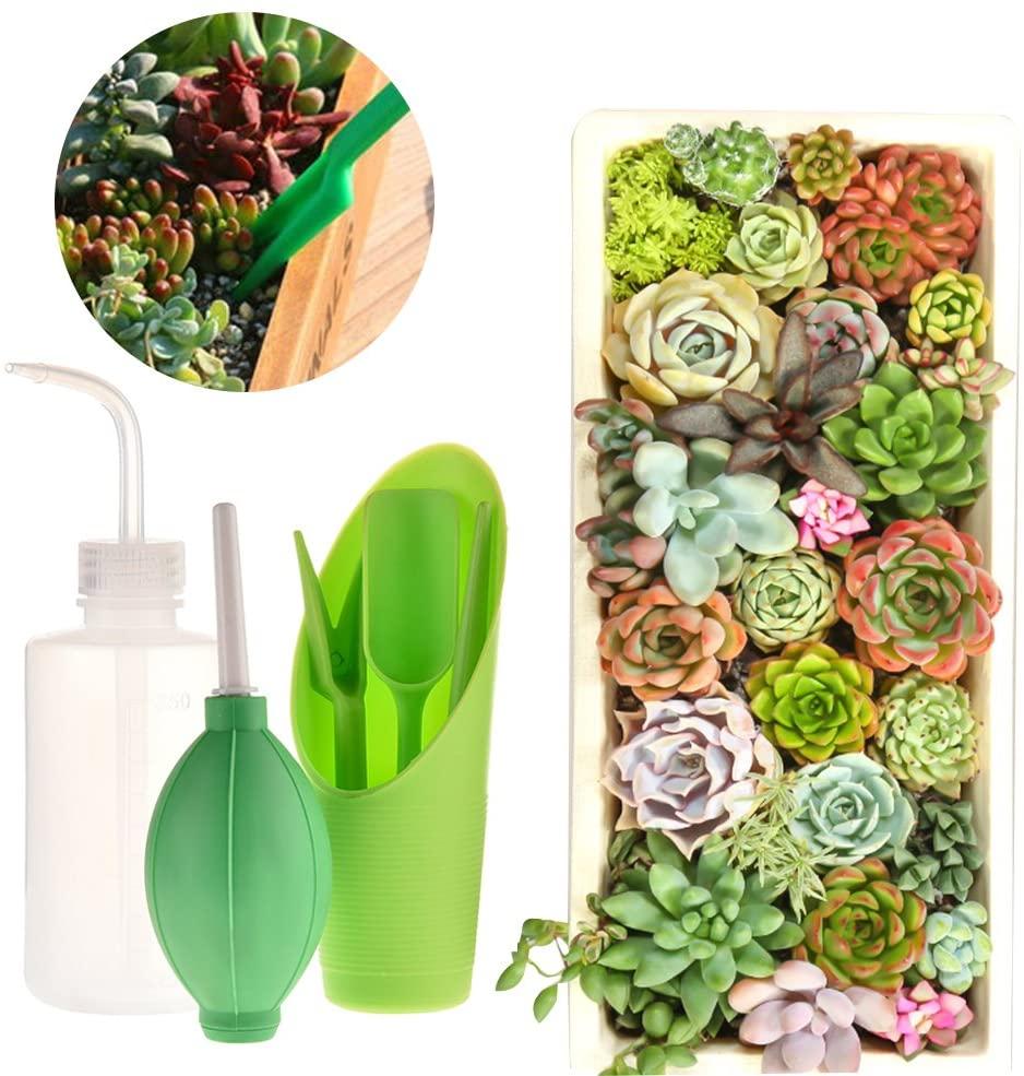 SHZONS Succulent Tools, 6pcs Gardening Tools Transplanting Tools Mini Planting Tool Set for Indoor Miniature Fairy Garden Plant Care