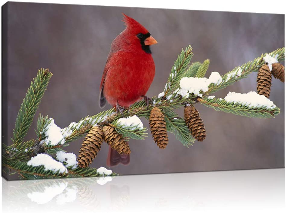 Artsbay Modern Canvas Painting Birds Red Cardinal on Snowy Branch Pictures Print Winter Scene Christmas Artwork Wall Decor Stretched and Framed for Livng Room Bedroom Decoration 20x36inch