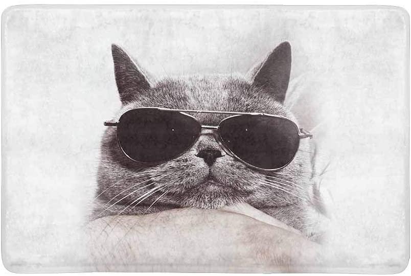 InterestPrint Funny Muzzle of Gray British Cat in Sunglasses Doormat Non Slip Indoor/Outdoor Floor Mat Home Decor, Entrance Rug Rubber Backing 23.6