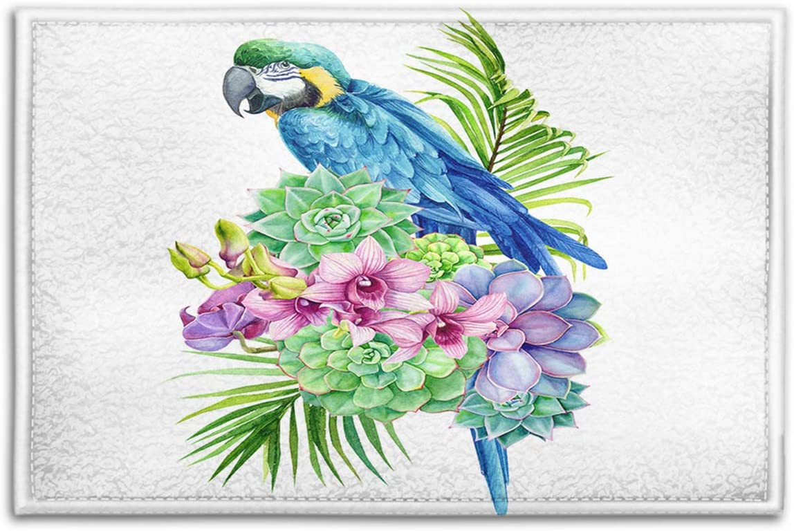 BJOLEdS Parrot Indoor Outdoor Doormats Tropical Bird Plants Palm Leaves Exotic Flowers Succulents Orchid on White Decorative Non Slip Entrance Floor Mats Bathroom Kitchen Areas Rugs, 15.7