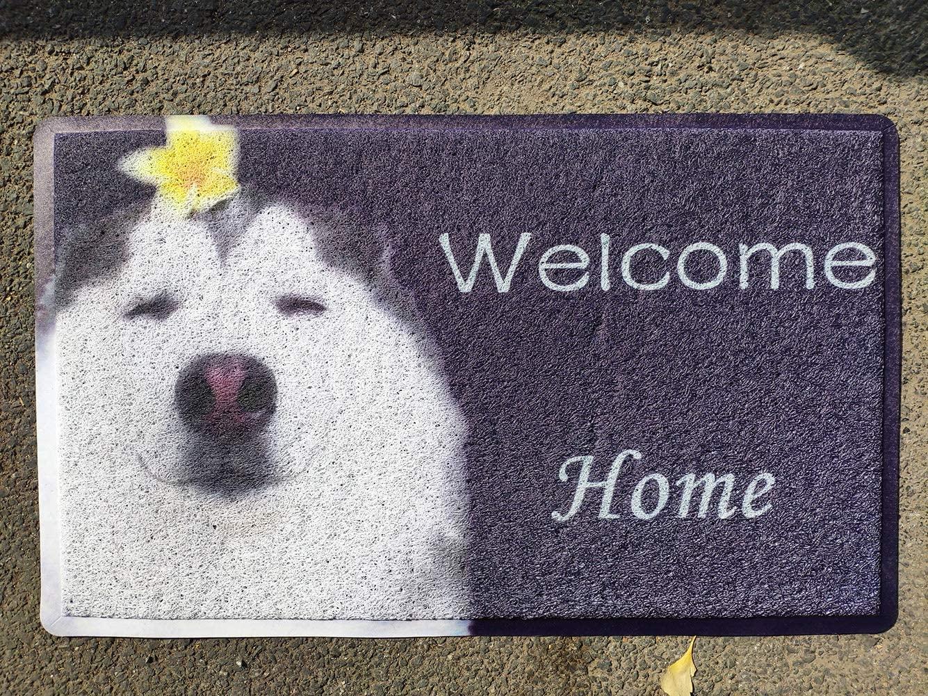 LK-LX Door Mat Floor Mat Welcome Home Funny Dog 18