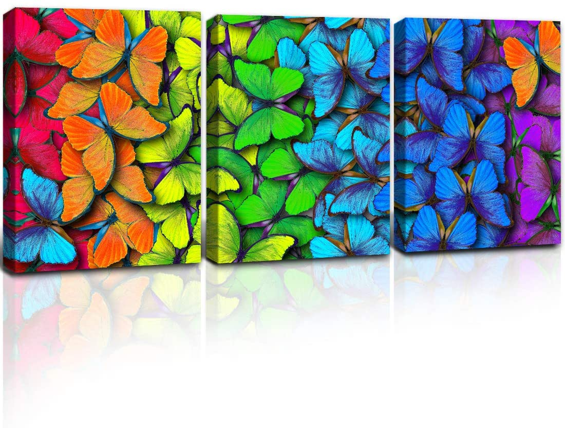 Gardenia Art Colorful Butterflies Giclee Paintings Wall Decor for Kitchen Living Room Bedroom, 12x16 inch/Piece, unframed, 3 Panels