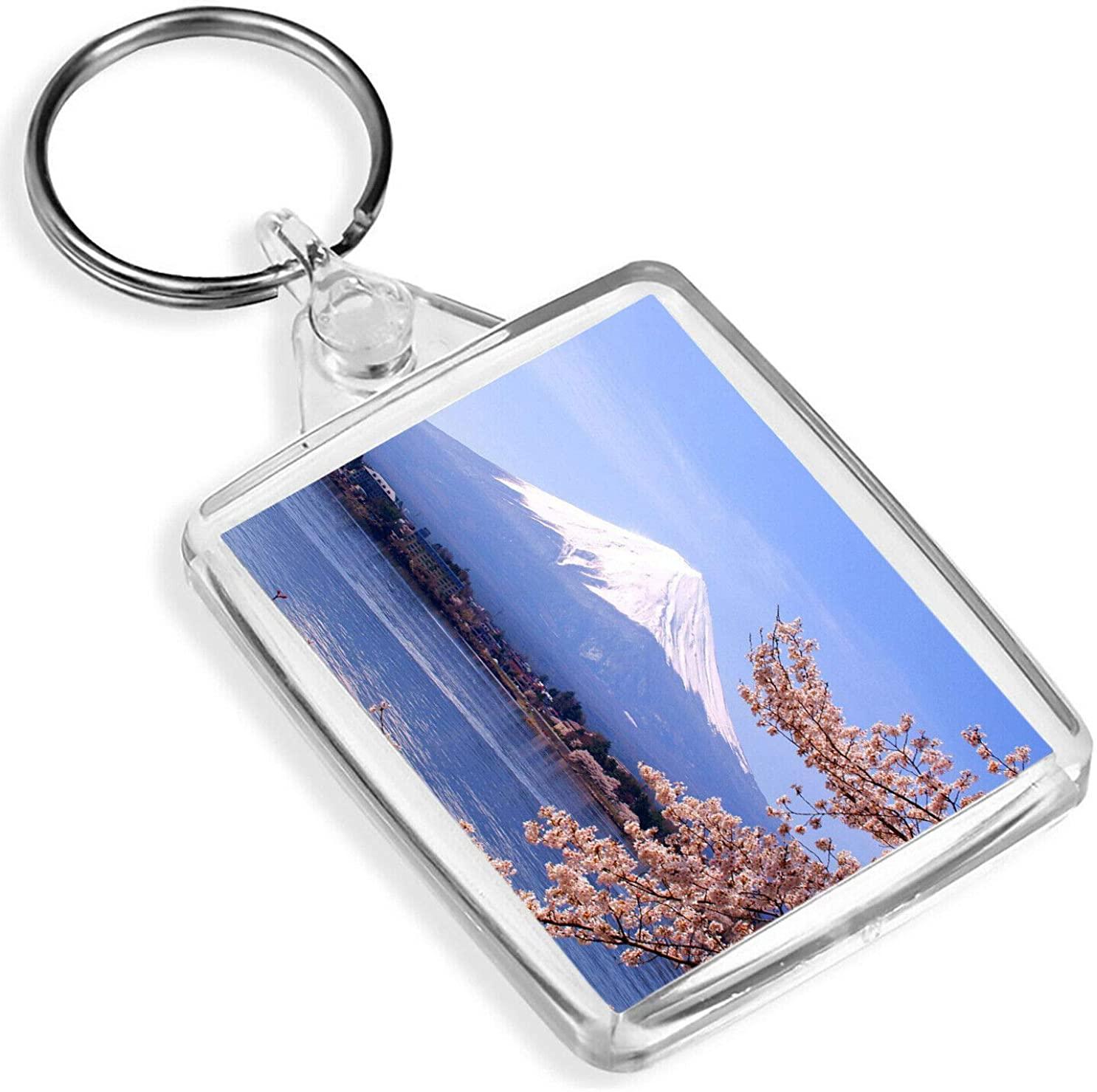 Destination Vinyl Keyrings Mount Fuji Japan Keyring Mountain Cherry Blossom Tree Sakura Keyring Gift #8986