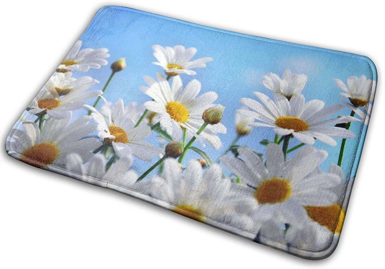 Summer Daisy Flowers Indoor Outdoor Rug 40cmx60cm Front Door Mat Waterproof, Non Slip Washable Quickly Absorb Moisture and Resist Dirt Rugs for Entryway
