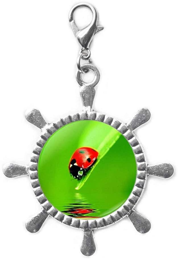 Ladybug Rudder Zipper Pull,Ladybird Charm Gift,Ladybird Jewelry,Lady Bug Rudder Zipper Pull,Ladybug Gifts, Woman Rudder Zipper Pull-JV183