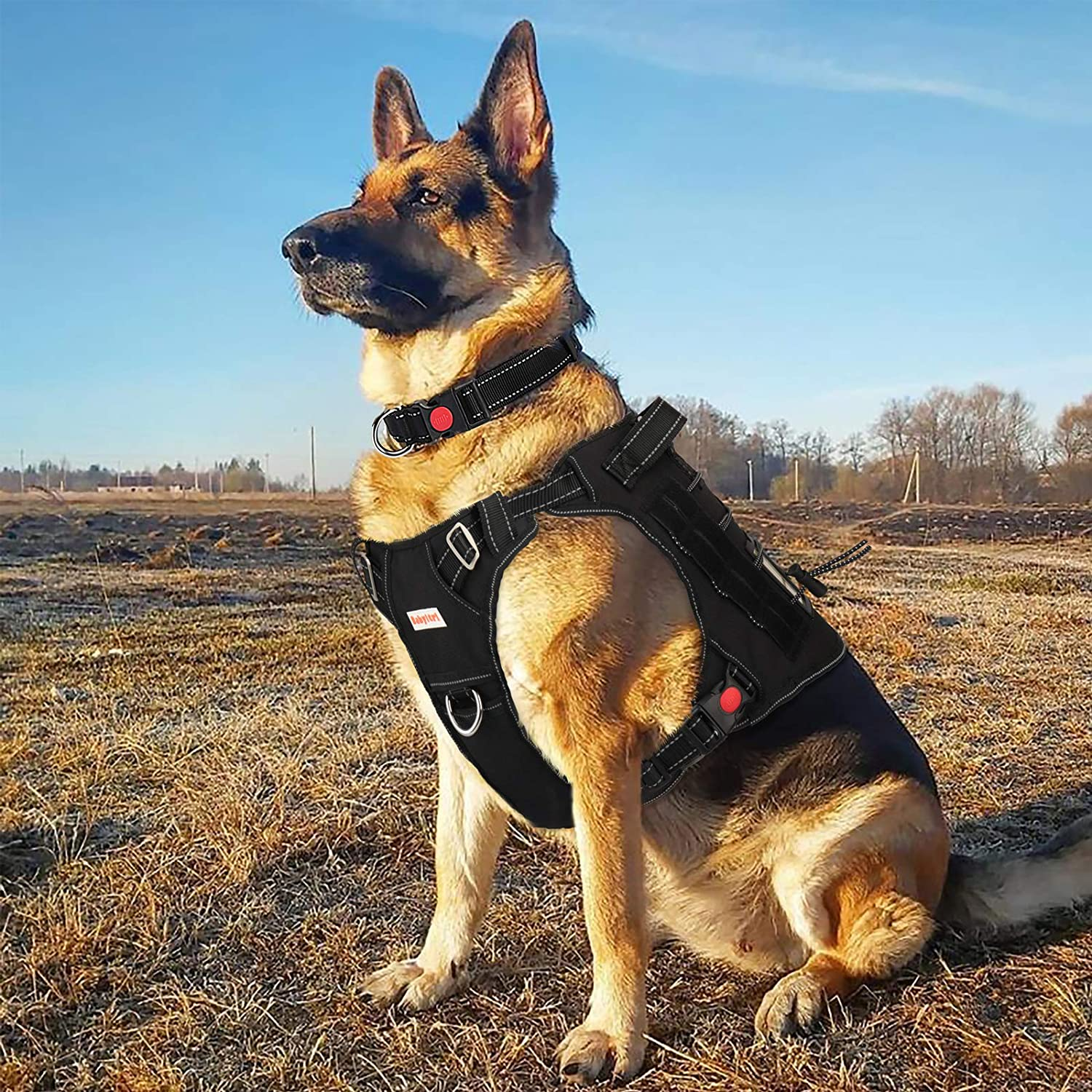 BABYLTRL Tactical Dog Harness for Large Medium Small Dogs, No Pull Dog Harness, Working Dog MOLLE Vest with Handle, Reflective K9 Military Service Dog Vest Harness for Training Hunting Walking