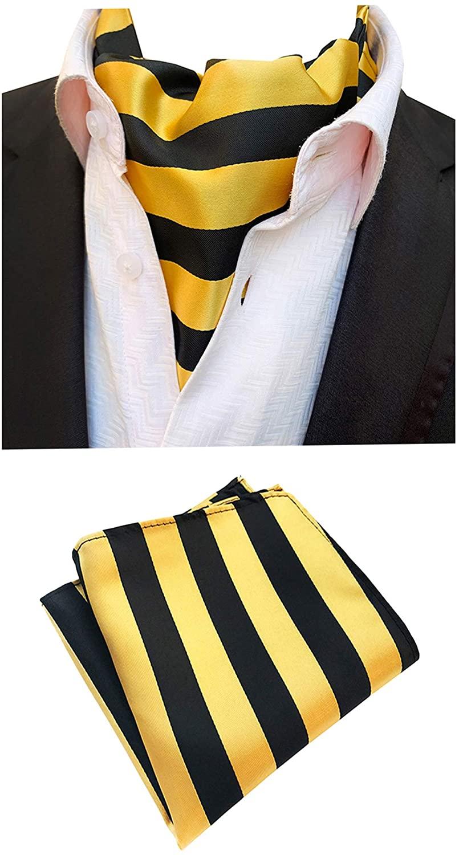 MOHSLEE Men Paisley Cravat Necktie Woven Silk Formal Ascot Tie Pocket Square Set
