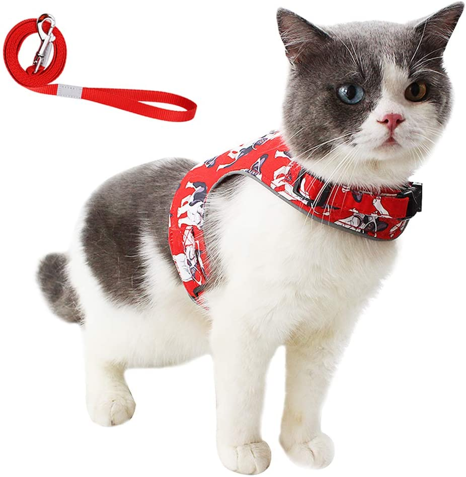 Lopnord Cat Harness and Leash for Walking, Escape Proof Soft Breathable Mesh Jacket with Reflective Strap, Running Cushioning and Comfortable Fit for Pet Kitten Puppy Rabbit