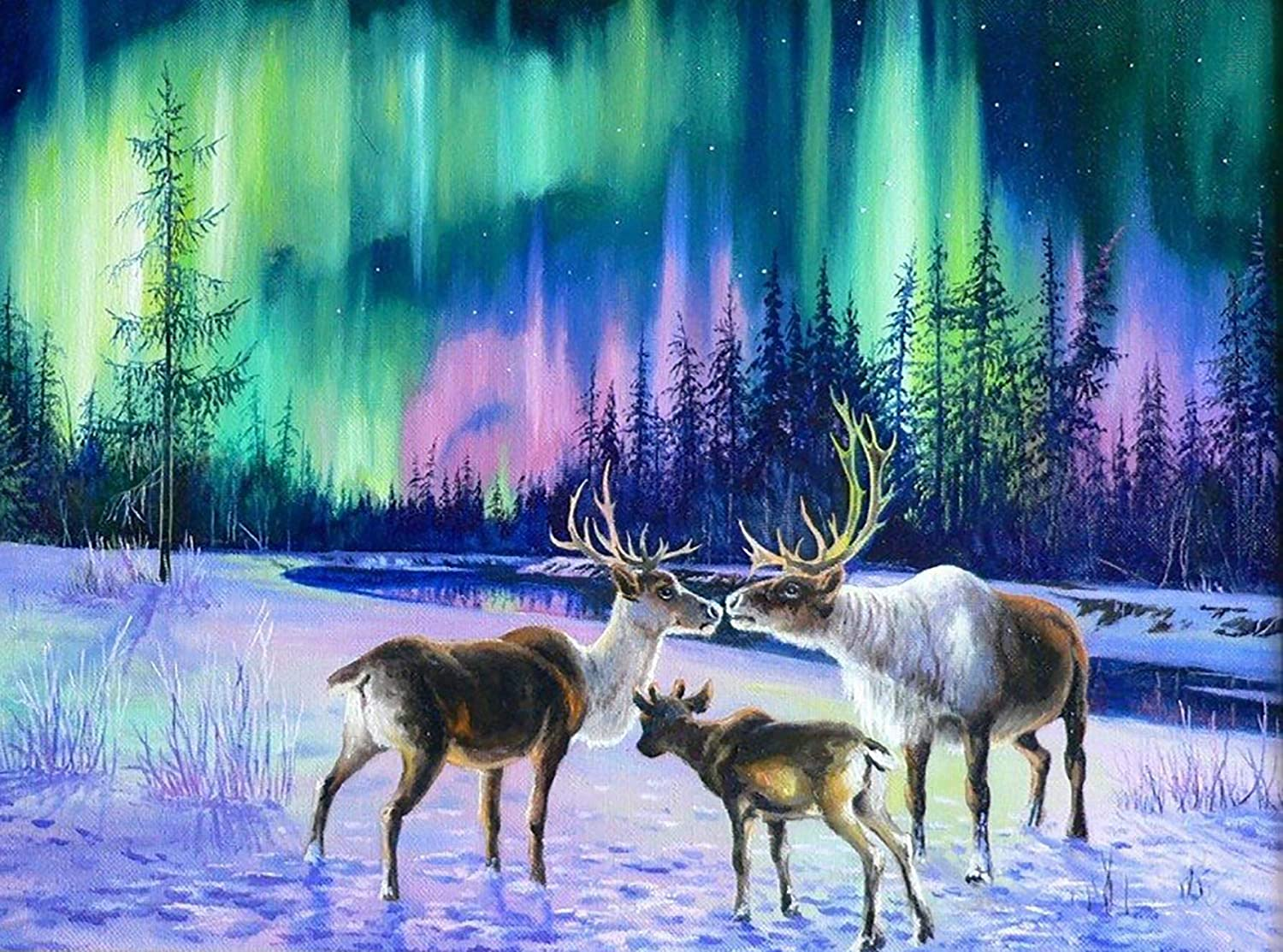 Bimkole DIY 5D Diamond Painting Kit Aurora Deer by Number Kits Paint with Diamonds Arts DIY for Home Decor, 16x20 inch(m4-566)