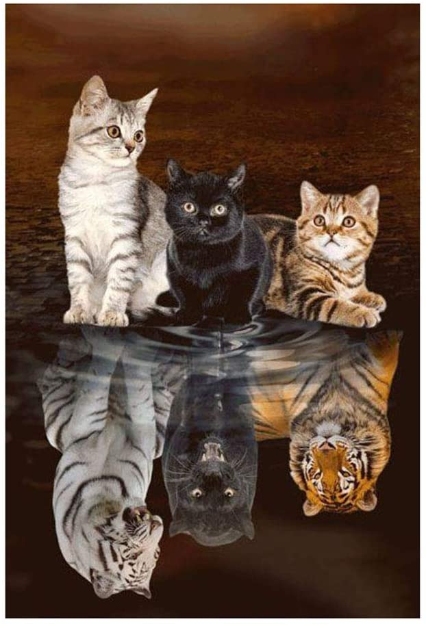 Ingzy 5D Diamond Painting Kits Cat Tiger Full Drill,DIY Crystal Diamond Art Kits Cross Stitch Mosaic Embroidery Home Wall Decor(12x16inch)