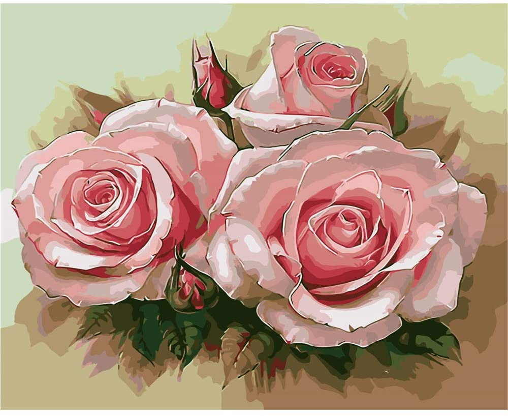 CHUNXIA DIY Oil Paint by Numbers for Kids and Adults Kits,16x20 Inch Canvas with Paintbrushes,Home Wall Decor Pink Rose Flowers ZTY013-RA3388