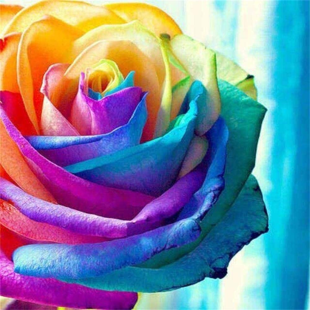 Diamond Painting Kits for Adults - 5D Diamond Art Kits for Adults with Painting by Number Kits Full Drill with Round Drills - Great Decor for Room,Office,Kitchen,Shop and Gift (Colorful Rose)