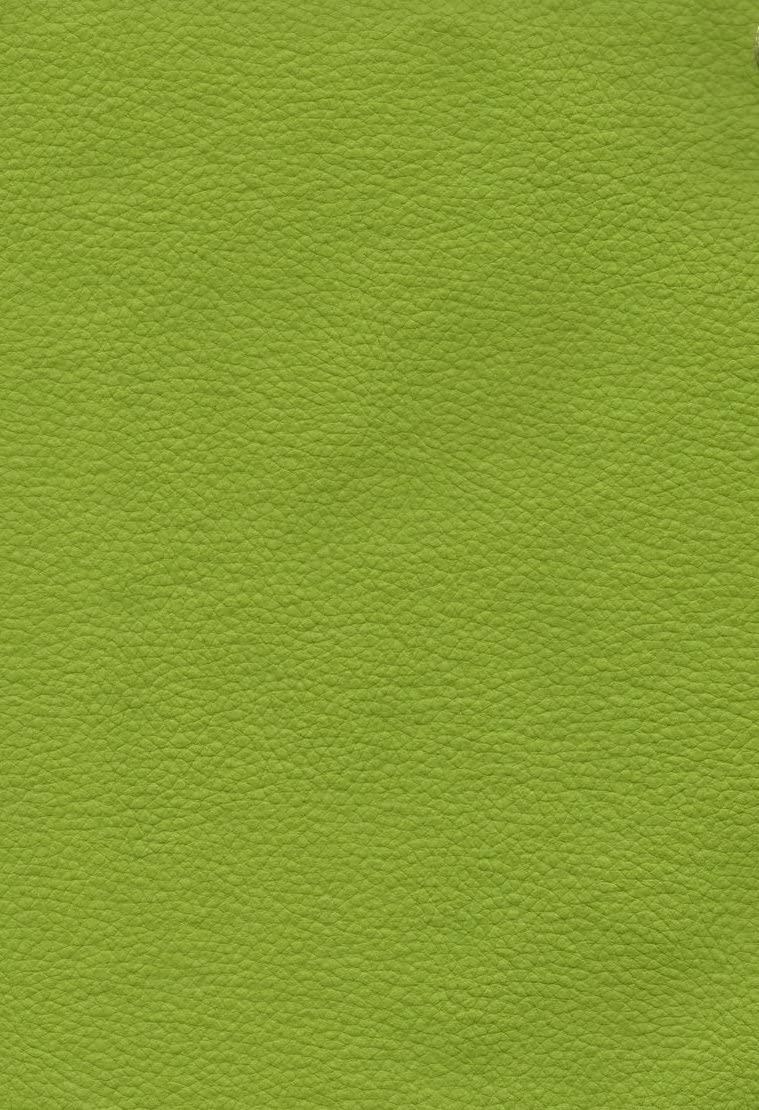 Marine Vinyl Citrus Champion Outdoor/Indoor Pebble Grains Fabric 54