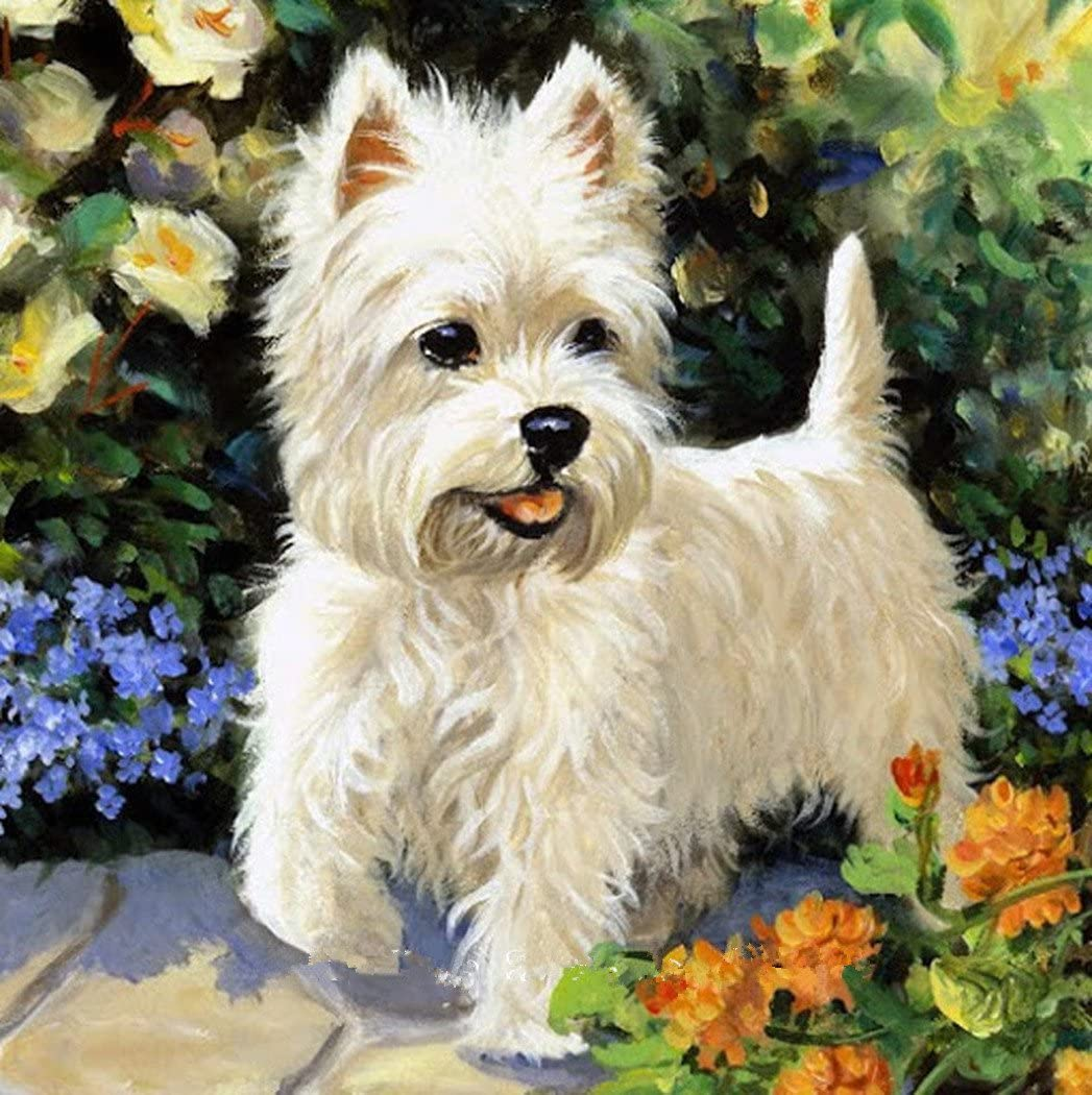 OneHippo 5D Drilled Resin Diamond Painting Needlework Diy Diamond Painting Cross Stitch Diamond Craft Dog (20x20)CM