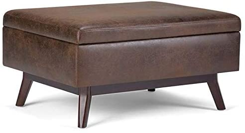 Atlin Designs Mid Century Top Lift Faux Leather Storage Coffee Table, Ottoman in Chestnut