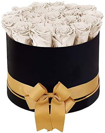 GIFTS PLAZA (D) Luxury Long Lasting Roses in a Black Box, Preserved Flowers Empire L (Pearl)