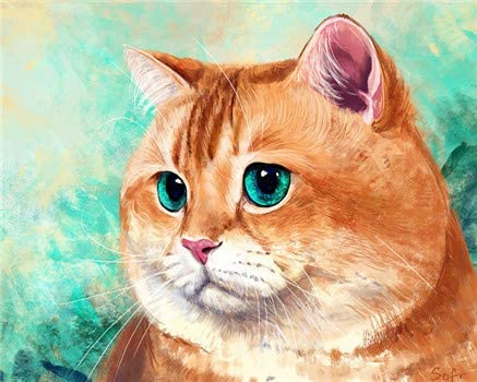 Paint by Numbers Kit for Adults Beginner DIY Oil Painting 16x20 inch - Orange Cat, Drawing with Brushes Christmas Decor Decorations Gifts (Frame)