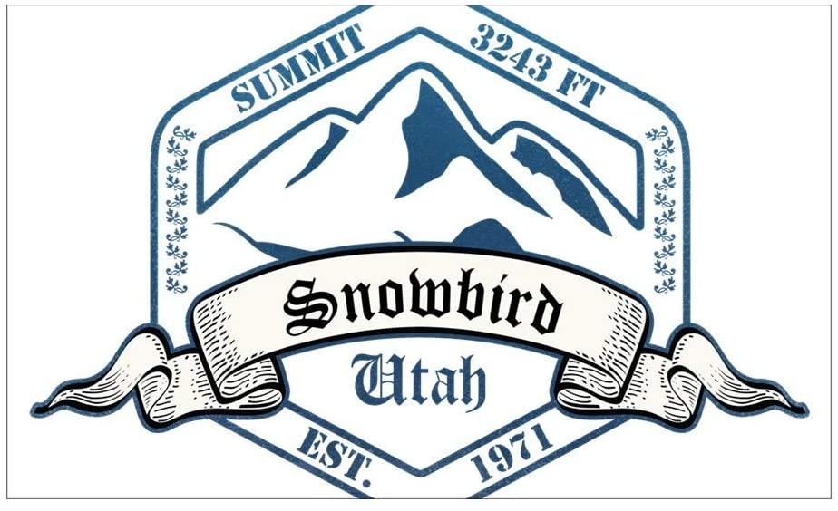 CNW Studio Snowbird Ski Resort Utah Decal Vinyl Bumper Sticker 5