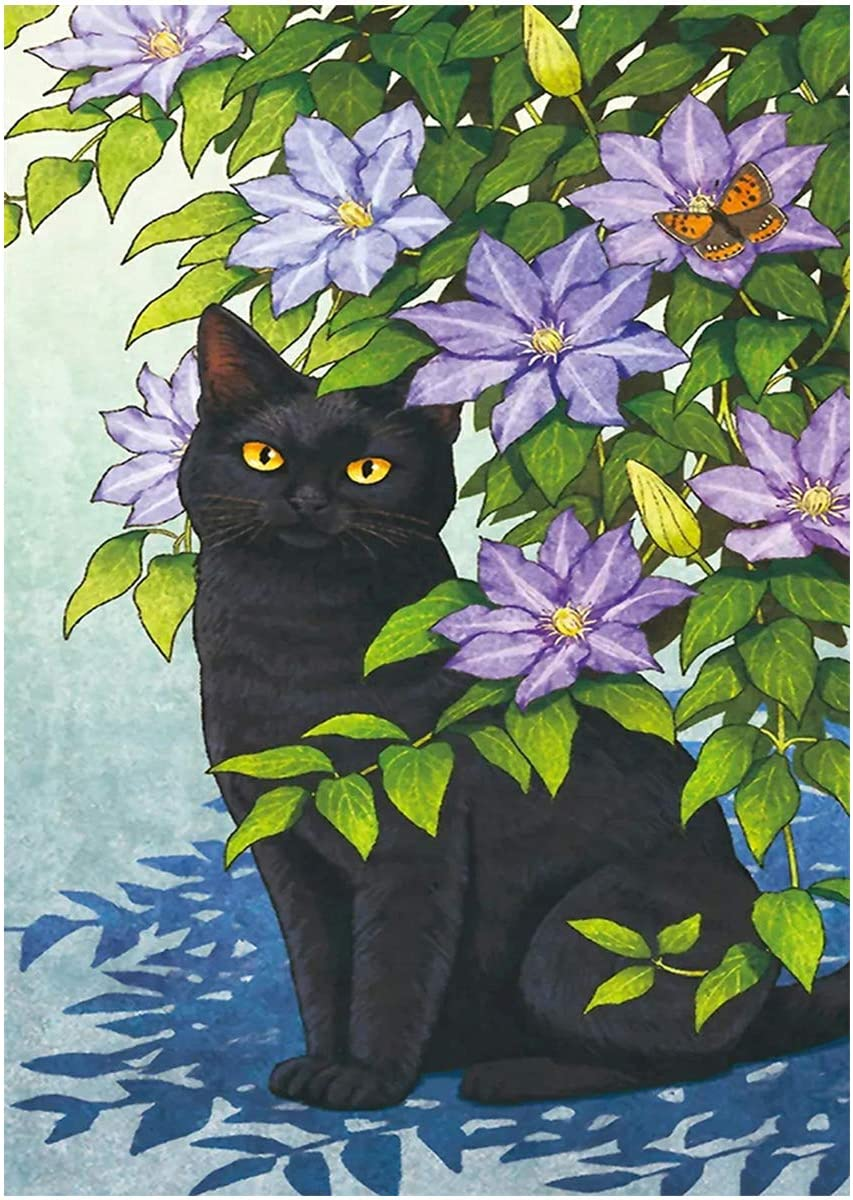 RICUVED DIY 5D Diamond Painting Kits Full Round Drill Paint by Number for Adults Kids Black Cat Picture Embroidery Cross Stitch Arts Craft Wall Sticker Home Decoration 15.7x11.8 inch
