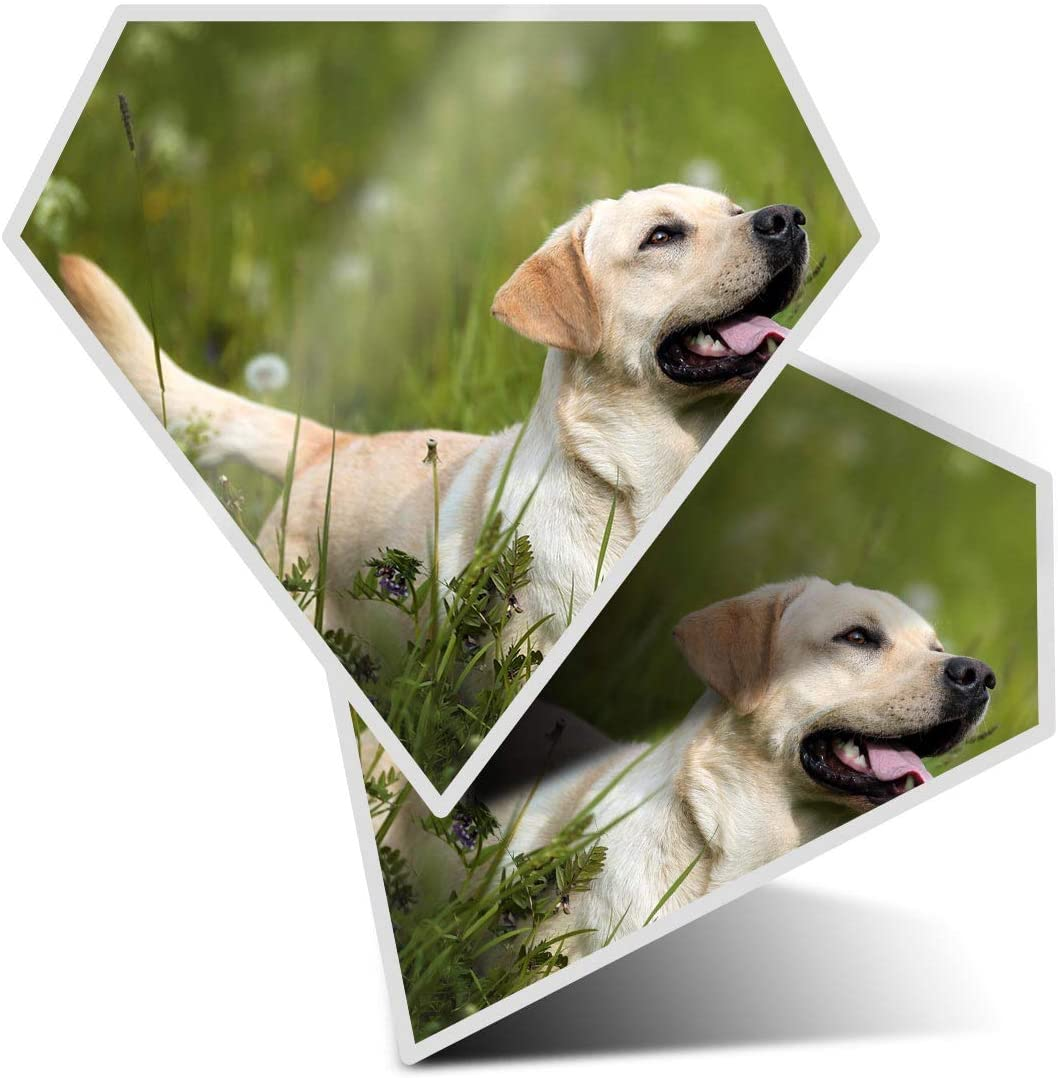 Awesome 2 x Diamond Stickers 7.5 cm - Golden Retriever Dog Puppy Labrador Fun Decals for Laptops,Tablets,Luggage,Scrap Booking,Fridges,Cool Gift #16887