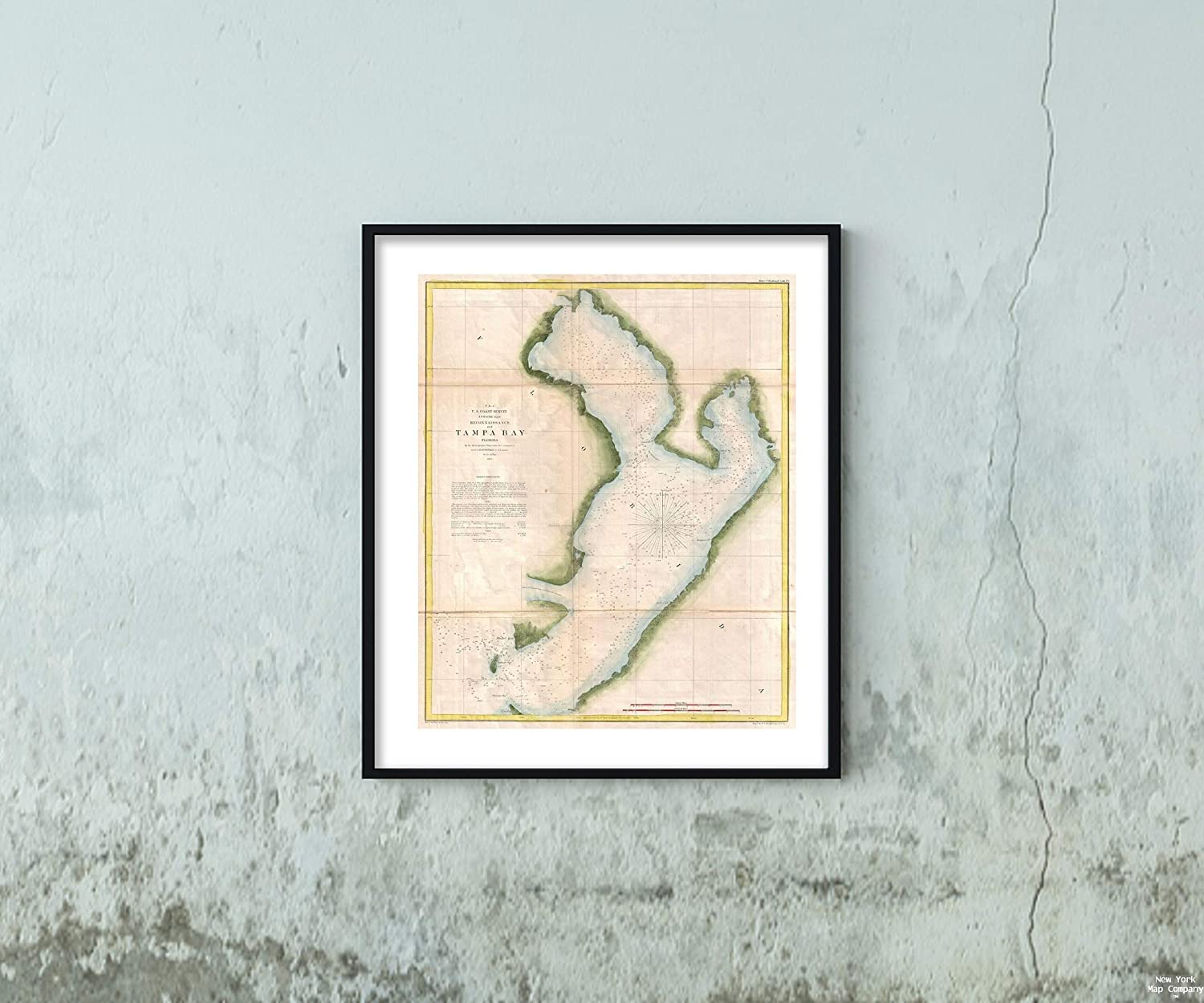 1855 U.S. Coast Survey Chart or of Tampa Bay, Florida Map|Vintage Fine Art Reproduction|Size: 20x24|Ready to Frame