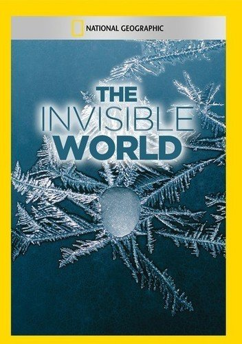 Invisible World, The