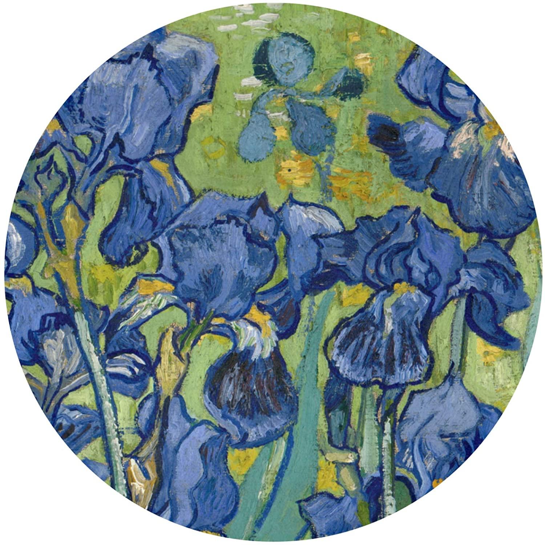 Van Gogh Irises Purple Fine Art (1) Indoor Outdoor Rug Round 60cmx60cm Front Door Mat Waterproof, Non Slip Washable Quickly Absorb Moisture and Resist Dirt Rugs for Entryway