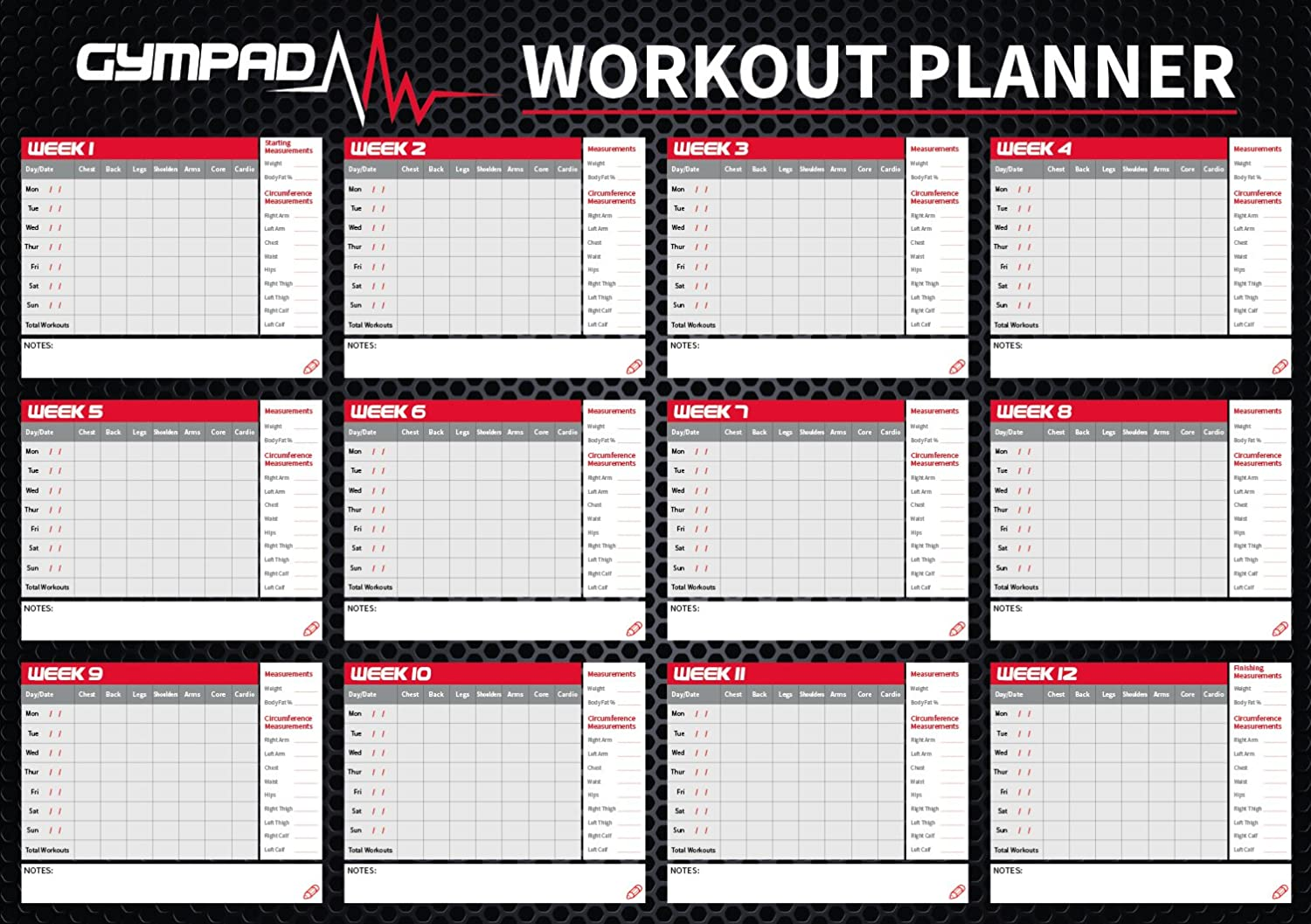 GymPad 12 Week Fitness Workout Planner - Premium Quality 16in x 23in Wall Chart Poster
