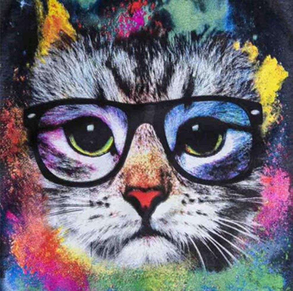 Eiflow 5D Diamond Painting Kits for Adults Full Drill,14x14in Embroidery Art DIY Kits Paint by Diamonds for Wall Decor - Cat with Glasses