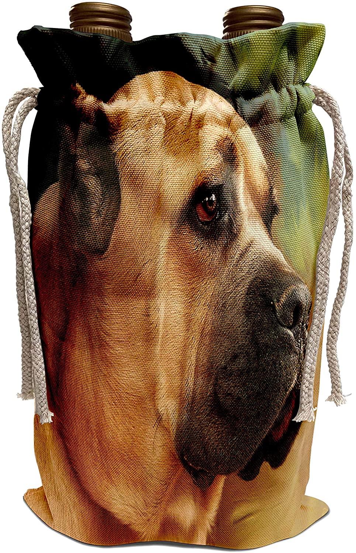 3dRose Dogs Cane Corso - Cane Corso - Wine Bag (wbg_4486_1)