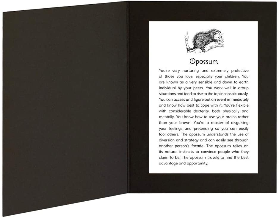 Opossum with Power Animal Message in 5x7 picture folder frame