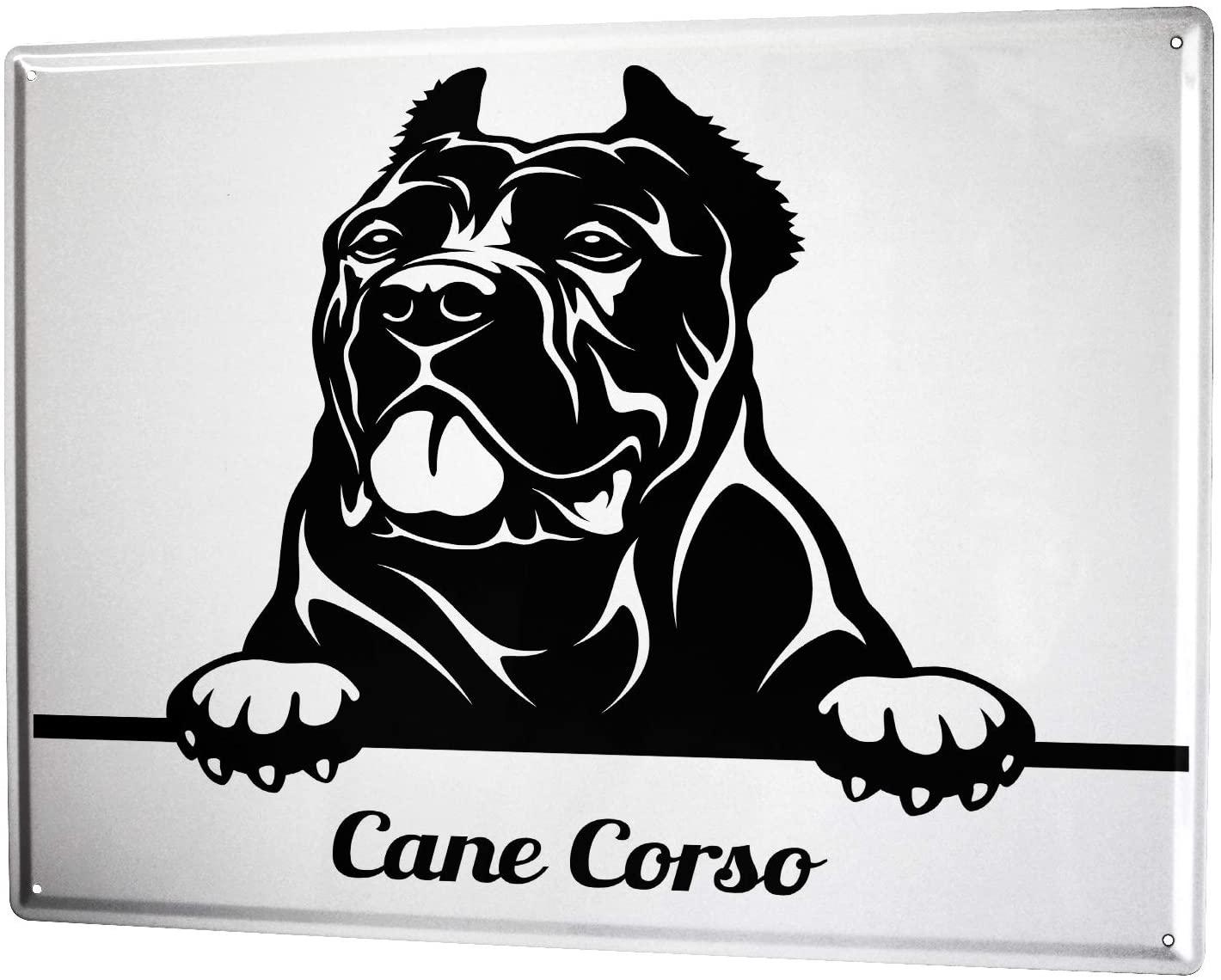 LEotiE SINCE 2004 Metal Sign Veterinary Practice Motive Dog Cane Corso