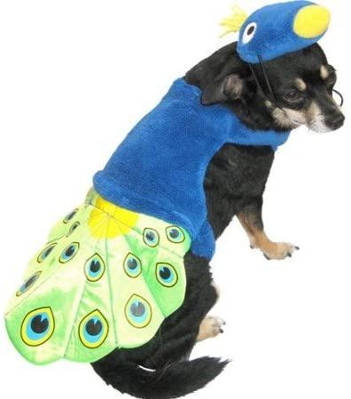 Peacock Pet Costume (XXS)