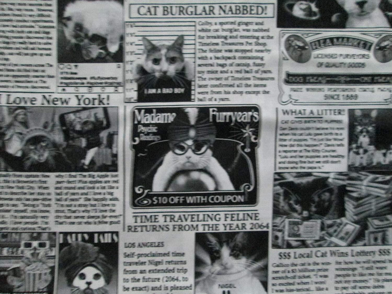 Cat Newspaper Black White Newsprint Kitty News Tabloids 100% Cotton Quilting Sizes: Fat Quarter (18 x 22)