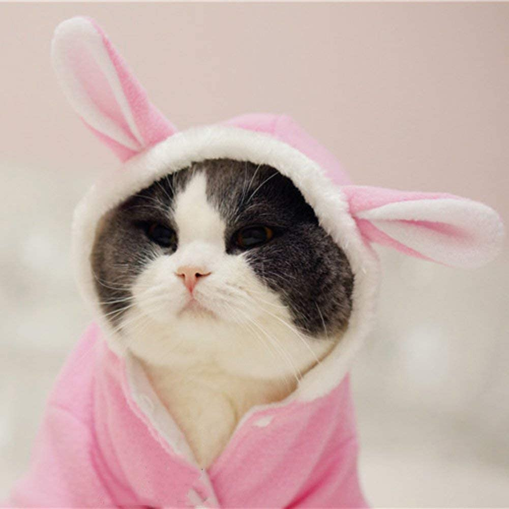 WORDERFUL Pet Dog Rabbit Costume Puppy Hoodies Winter Coat Bunny Autumn Winter Halloween for Small Dog and Cat