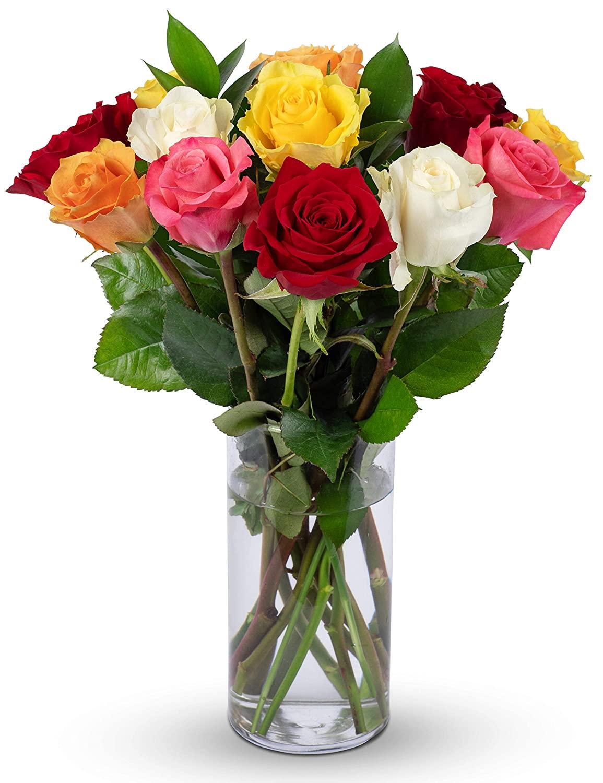 Benchmark Bouquets Dozen Rainbow Roses, With Vase (Fresh Cut Flowers)