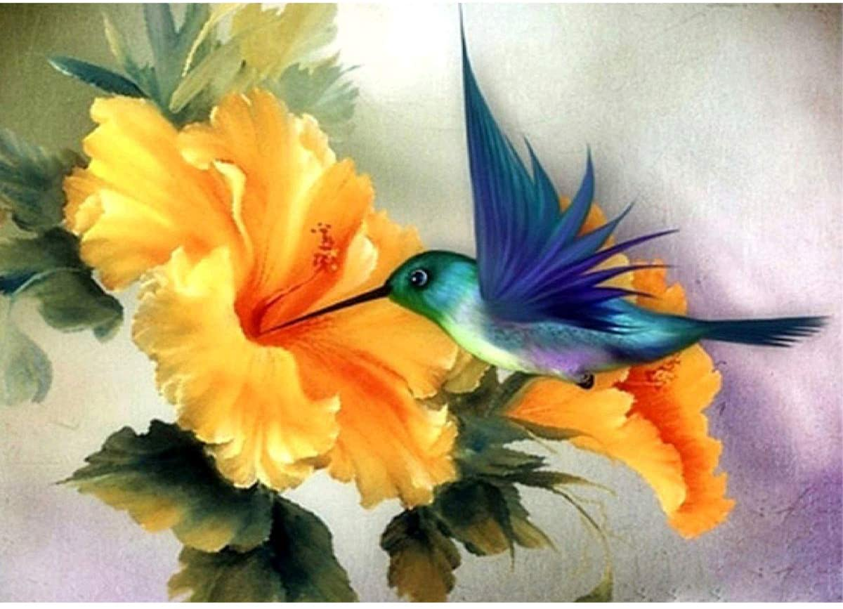 ACANDYL Paint by Number Hummingbird DIY Oil Painting Paint by Number Kit for Adults Kids Students Beginner Canvas Painting by Numbers Acrylic Oil Painting Arts Craft Decoration Hummingbird 16x20 inch