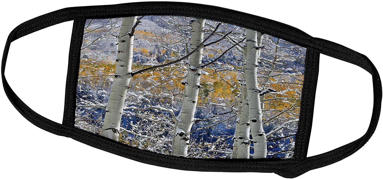 3dRose Aspen Grove in Autumn, Keebler Pass, Rocky Mountains, Colorado - Face Covers (fc_278824_2)