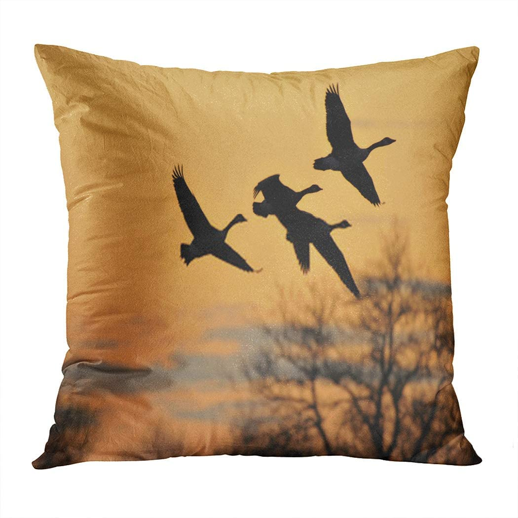 Janyho Pillowcase Canada Goose Branta Canadensis in Sunrise Colours Household Easy to Clean and Durable Soft Decorative Polyester Pillowcase Square Sofa