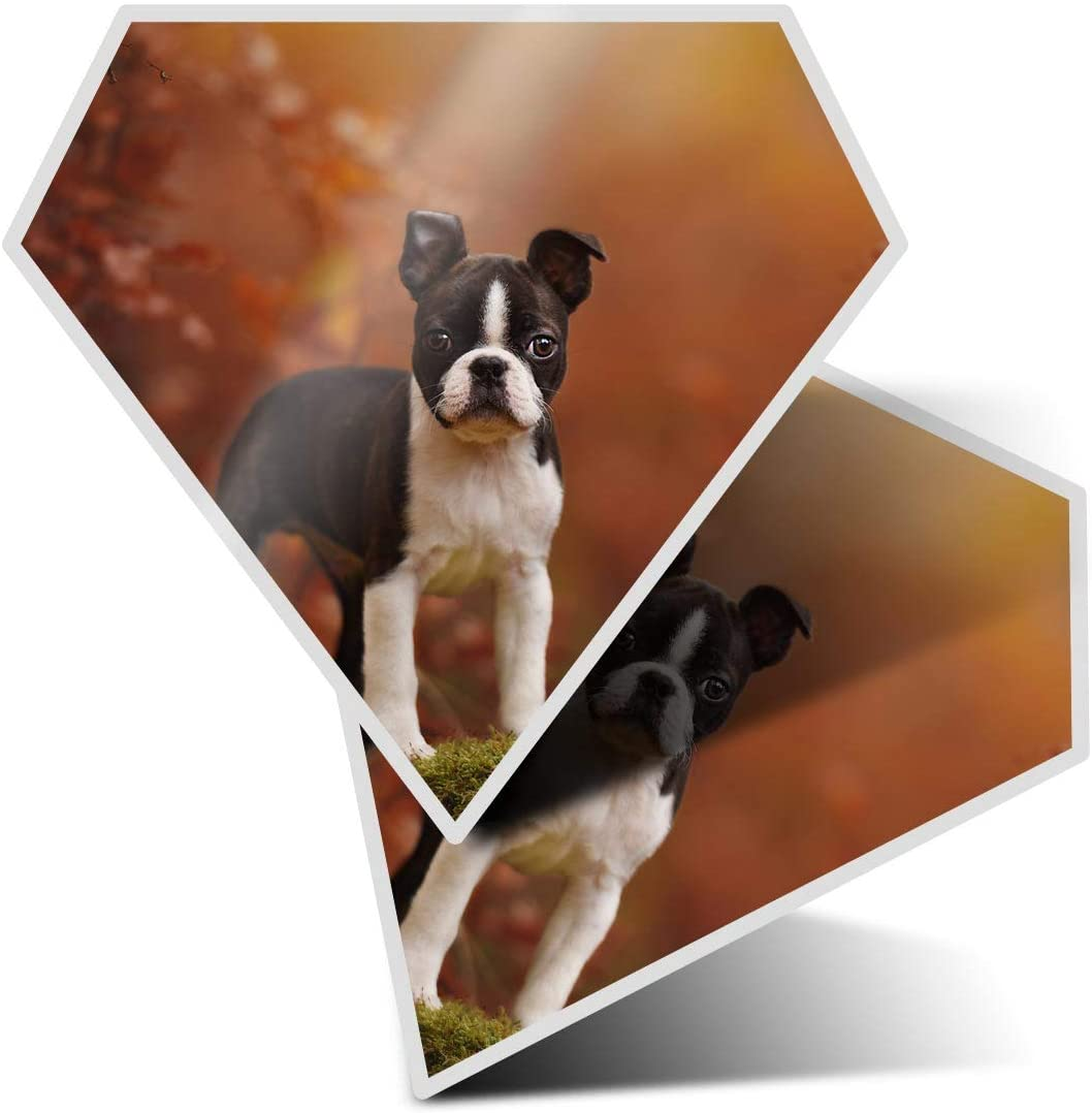 Awesome 2 x Diamond Stickers 7.5 cm - Boston Terrier Puppy Dog Fun Fun Decals for Laptops,Tablets,Luggage,Scrap Booking,Fridges,Cool Gift #2705
