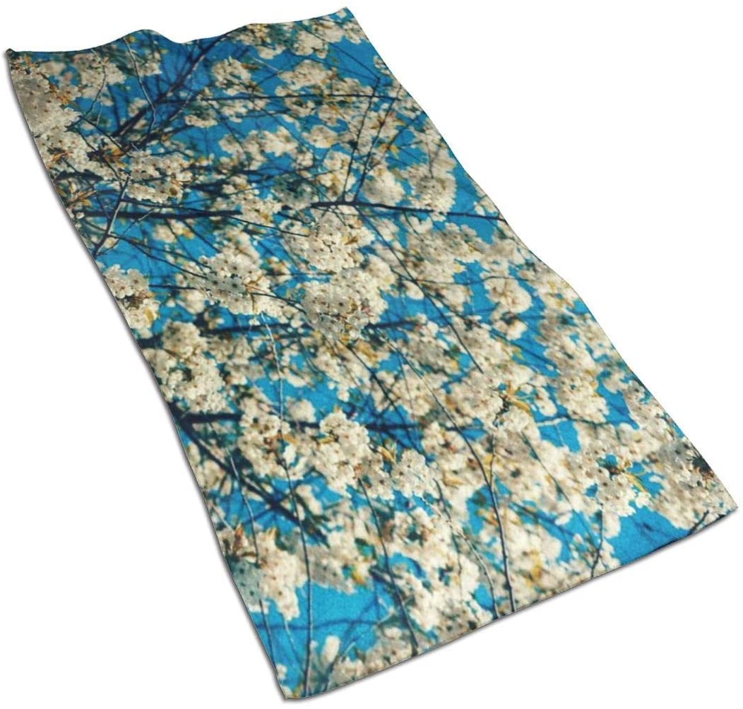 ~ Treble Sign Soft Absorbent Hand Towels, Small Bath Towel Guest Towel Home Bathroom Decorations 27.5 X 15.7 Inches-Tree Branches with Cherry Flowers Against Blue Sky