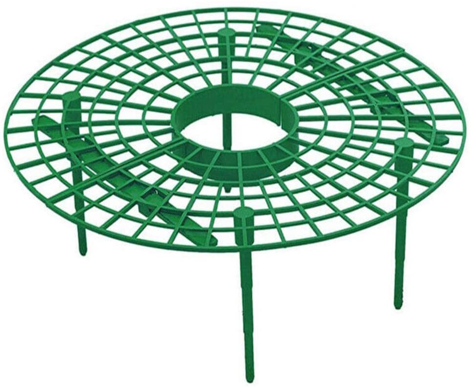 Strawberry Support Frame Strawberry Protection Net Strawberry Tray Keep The Distance Between The Fruit and The Ground Prevent Rot (6)