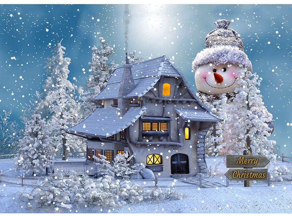 "1000 Piece Jigsaw Christmas Puzzle,Size 27.56"" x 19.66"" Children Puzzle Toys Puzzle Game Unique Home Decorations and Gifts-Merry Christmas (B)"